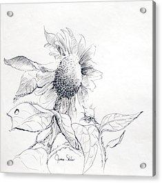 Whimsical Sunflower  Acrylic Print by James Skiles