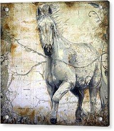 Whipsers Across The Steppe Acrylic Print by Enzie Shahmiri