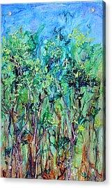 Whirlwoods Acrylic Print by Regina Valluzzi