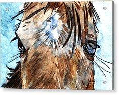 Whisper Acrylic Print by Elizabeth Briggs