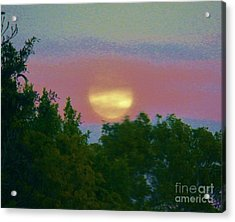 Whisper Good Night Acrylic Print by Judy Via-Wolff