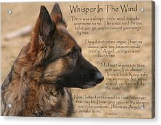 Whisper In The Wind Acrylic Print
