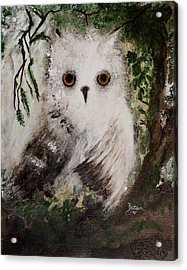 Whisper The Snowy Owl Acrylic Print