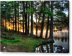 Whispering Pines 2 Acrylic Print