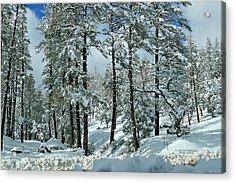 Whispering Snow Acrylic Print