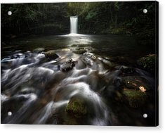 Whispers Of Water Acrylic Print