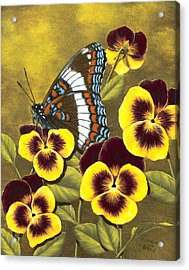 White Admiral And Pansies Acrylic Print