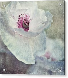 White And Pink Acrylic Print by Priska Wettstein