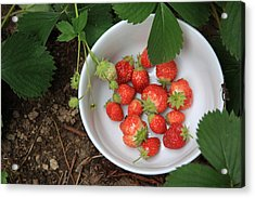 White Bowl With Strawberries Acrylic Print