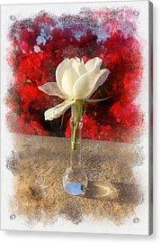 White Bud And Vase Acrylic Print by Rick Lloyd