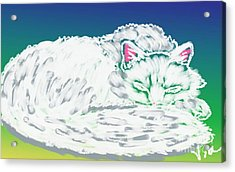 White Cat Acrylic Print by Judy Via-Wolff