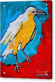 Acrylic Print featuring the painting White Crow by Ana Maria Edulescu