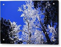 White Crystal Acrylic Print