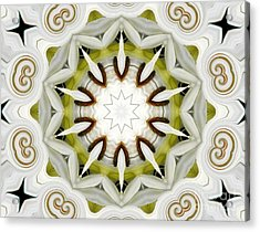 Acrylic Print featuring the photograph White Daisies Kaleidoscope by Rose Santuci-Sofranko