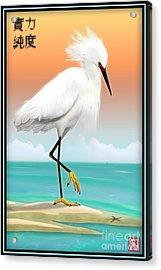 White Egret On Beach Acrylic Print by John Wills