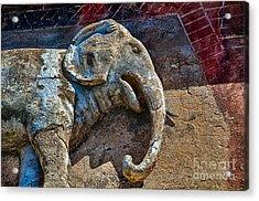 White Elephant Acrylic Print by Ken Williams