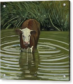 Acrylic Print featuring the painting White Face Herford In The Pond by John Reynolds