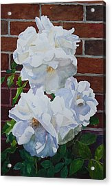 White Flower Acrylic Print by Helal Uddin