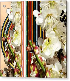 White Flower Medley Colorful Rainbow Stripes On The Backdrop Artist Navinjoshi  Acrylic Print by Navin Joshi