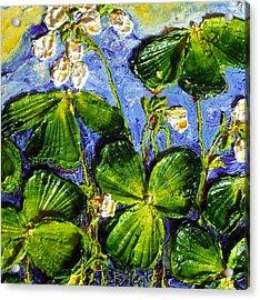 White Flowers Shamrocks Acrylic Print by Paris Wyatt Llanso