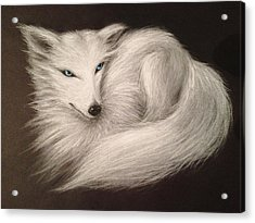 White Fox Acrylic Print