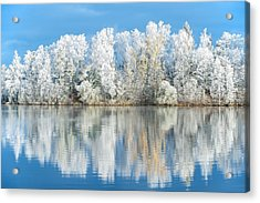 White Frost Acrylic Print