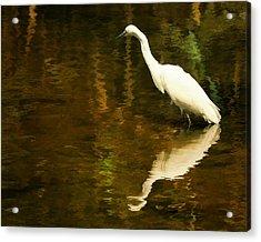 White Heron Acrylic Print by Dick Wood