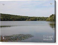 White Heron Lake Poconos Pa Acrylic Print by John Telfer