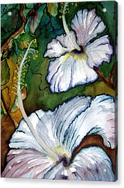 White Hibiscus Acrylic Print by Lil Taylor