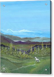White Horse Acrylic Print by Carl Genovese