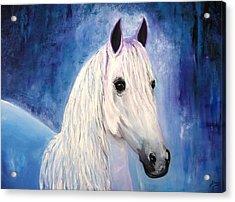 White Horse Acrylic Print by Doris Cohen