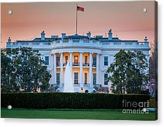 White House Acrylic Print by Inge Johnsson
