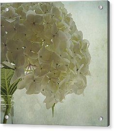 Acrylic Print featuring the photograph White Hydrangea by Sally Banfill