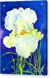 White Iris Acrylic Print by Barbara Jewell