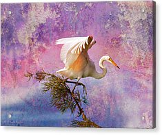 White Lake Swamp Egret Acrylic Print by J Larry Walker