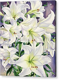 White Lilies Acrylic Print by Christopher Ryland