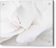 White Acrylic Print by Lina Jordaan