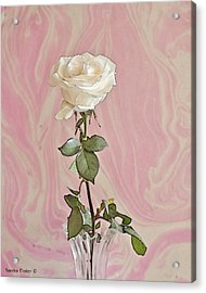 Acrylic Print featuring the photograph White Long Stemmed Rose by Sandra Foster