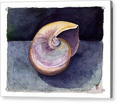 Acrylic Print featuring the painting White Nautilus by Katherine Miller
