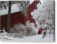 White On Red Acrylic Print by Paul Noble