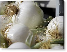 White Onions Acrylic Print by Terry Horstman