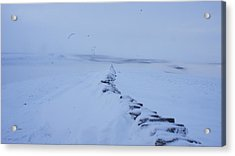 White Out Acrylic Print by Riley Handforth