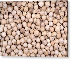 White Peppercorn Background Acrylic Print by Jane Rix