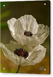 White Poppies Acrylic Print