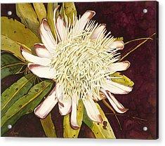 White Protea Acrylic Print