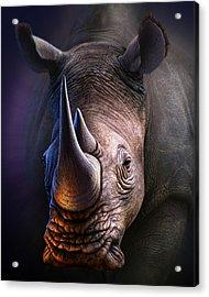 White Rhino Acrylic Print by Jerry LoFaro