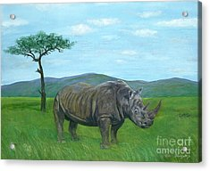 White Rhinoceros Acrylic Print by Tom Blodgett Jr