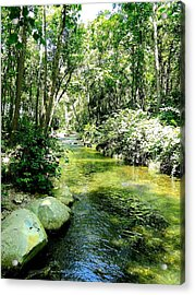 White River Basin Acrylic Print by Cindy Croal