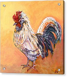 White Rooster Acrylic Print by Jennifer Lommers