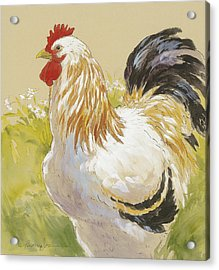 White Rooster Acrylic Print by Tracie Thompson